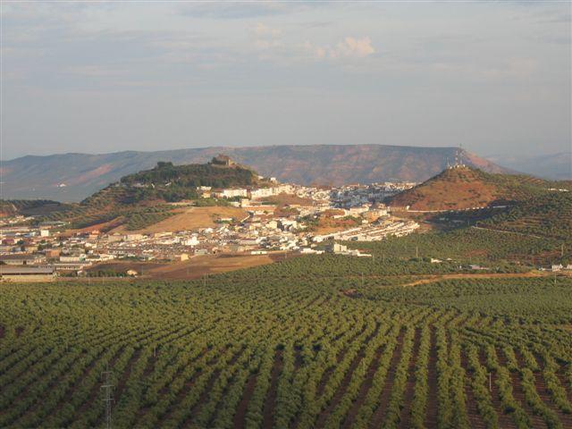 2 DE NOVIEMBRE.......... LINARES (Jaén) Vilches